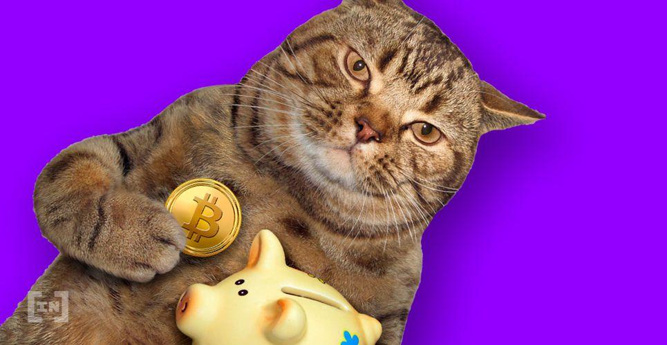 vebitcoin bitcoin