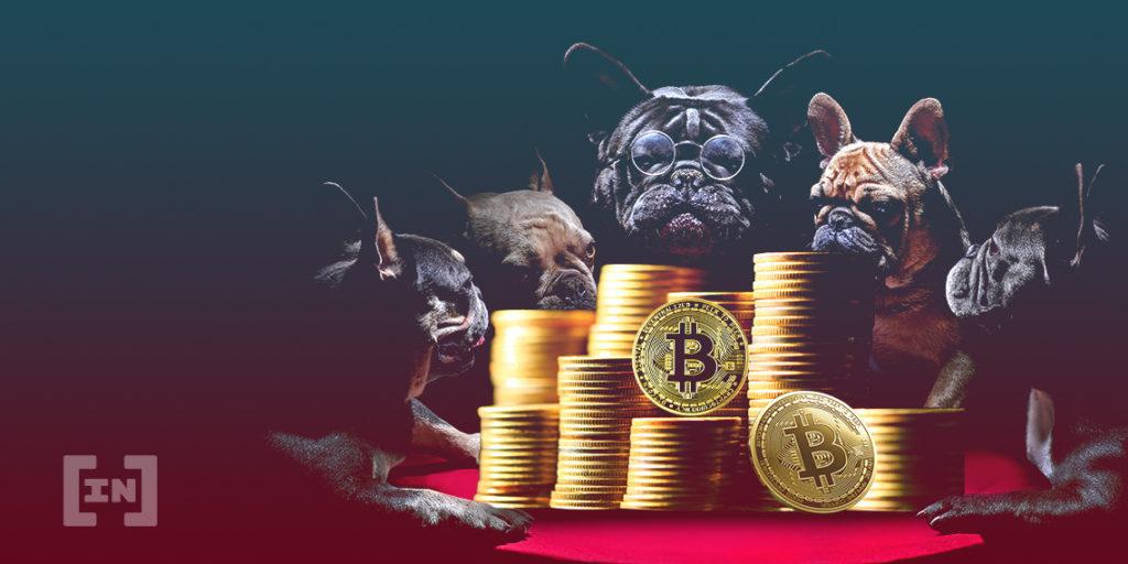 kripto para altcoin